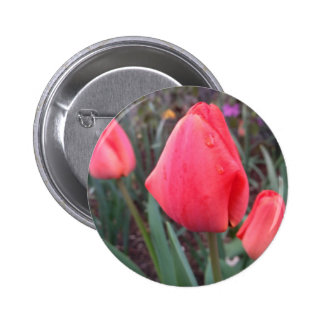 Teardrop Buttons