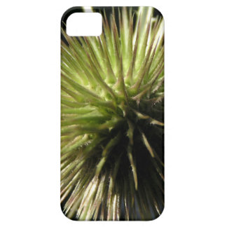Teasel on display barely there iPhone 5 case