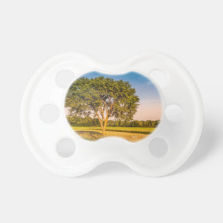 Teat of baby, photograph of a tree in fields dummy
