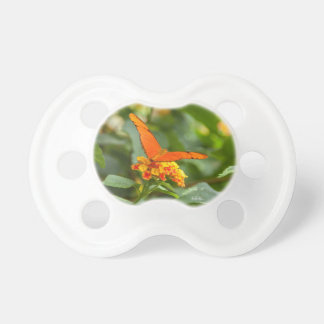 teat of photo baby of a butterfly on a flower dummy