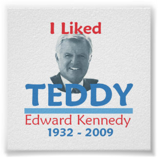 Ted Kennedy I LIKED TEDDY Poster