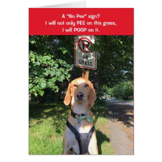 Teddy the Spaz Man Funny Birthday Card No Pee Sign