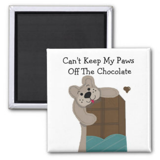 Teddybear Nibbling Chocolate Magnet