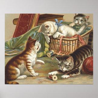 TEE Curious Cat Poster