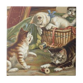 TEE Curious Cat Tiles