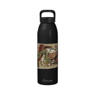 TEE Curious Cat Reusable Water Bottle