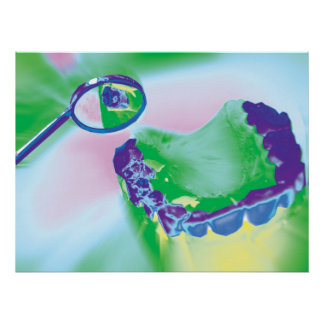 Teeth Model Dental Care Dentist Poster