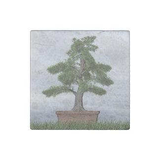 Temple juniper tree bonsai - 3D render Stone Magnet