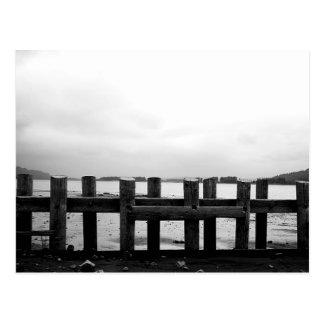 Ten Pilings in Monochrome Postcard