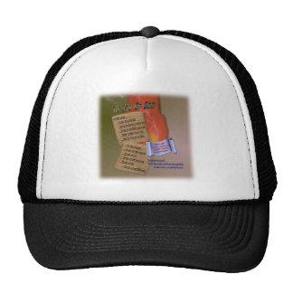 Ten Words Mesh Hats