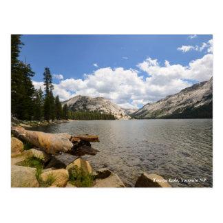 Tenaya Lake, Yosemite NP Postcard