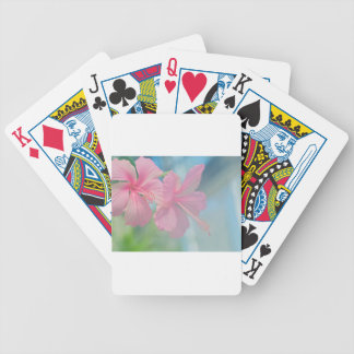 Tender macro shoot of pink hibiscus flowers bicycle playing cards