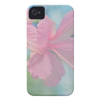 Tender macro shoot of pink hibiscus flowers iPhone 4 covers
