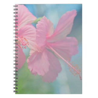 Tender macro shoot of pink hibiscus flowers notebook