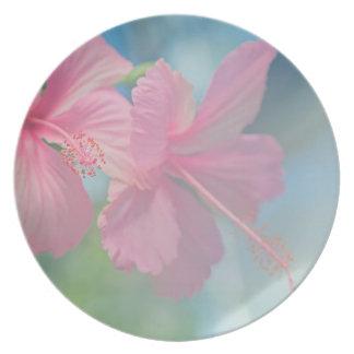Tender macro shoot of pink hibiscus flowers plate