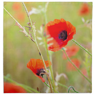 Tender shot of red poppies on the field napkin