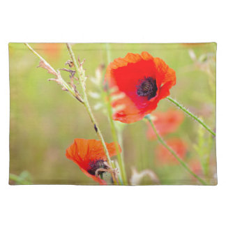 Tender shot of red poppies on the field placemat