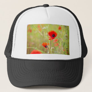 Tender shot of red poppies on the field trucker hat