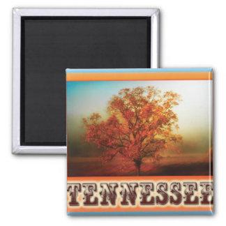 Tennessee Fall Tree Scene Magnet
