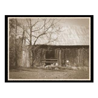 Tennessee Farm Old Barn Postcard