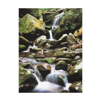 Tennessee, Great Smoky Mountains National Park 2 Canvas Prints