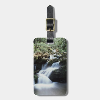 Tennessee, Great Smoky Mountains National Park 3 Tag For Bags