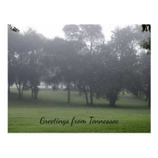 Tennessee in the Morning Postcard