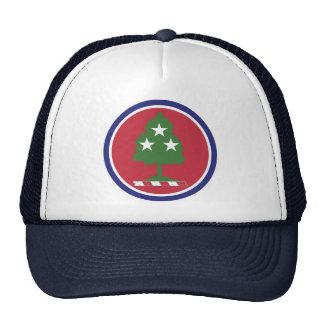 Tennessee National Guard - Hat