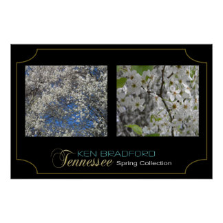 Tennessee Spring Collection - Ken Bradford - 001 Poster