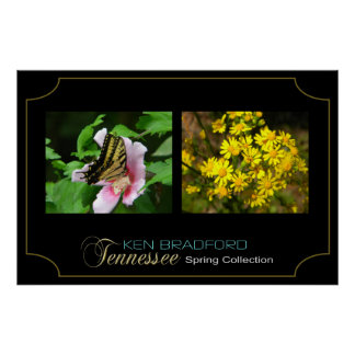 Tennessee Spring Collection - Ken Bradford - 002 Poster