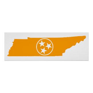 Tennessee State Orange Poster
