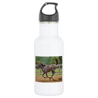 Tennessee Walker Yearling Tail Up 532 Ml Water Bottle