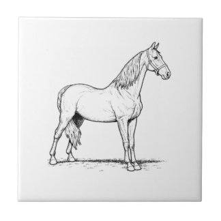 Tennessee Walking Horse - Standing Ceramic Tile