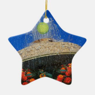 Tennis, fountain and flowers ceramic star decoration