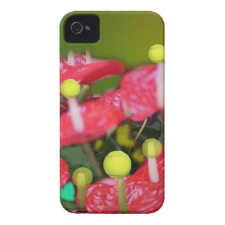 Tennis with red flowers iPhone 4 cases