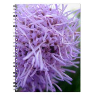 Tentacle Spider Violet Flower Notebooks