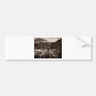 Tereza/RS saint Bumper Sticker