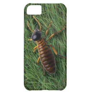 Termite iPhone 5C Cover