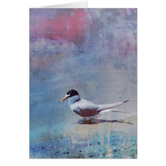 Tern by the Shore Blank Card