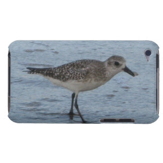 Tern on the Beach iPod Touch Cases