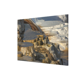 Terrace Mountain at Mammoth Hot Springs Gallery Wrapped Canvas