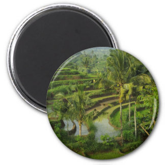 Terrace Ricefield in Bali 6 Cm Round Magnet
