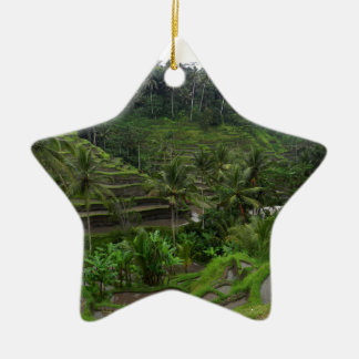 Terraced Rice Fields Ceramic Star Decoration