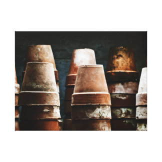 Terracotta Plant Pots Stretched Canvas Print