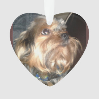 TERRIER DOG ornament