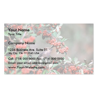 Test Bird with red holly balls394 Business Card Template