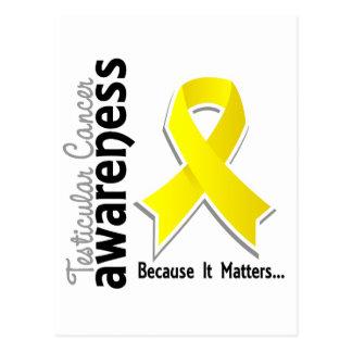 Testicular Cancer Awareness 5 Postcard