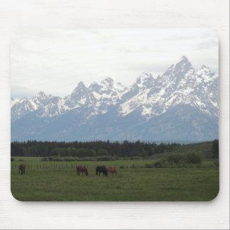 Teton Horse Pasture Mouse Pad