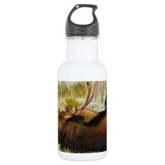 Teton King Moose Bull 532 Ml Water Bottle