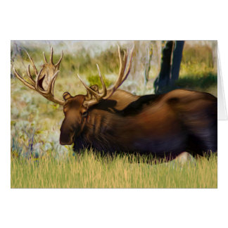 Teton King Moose Bull Card